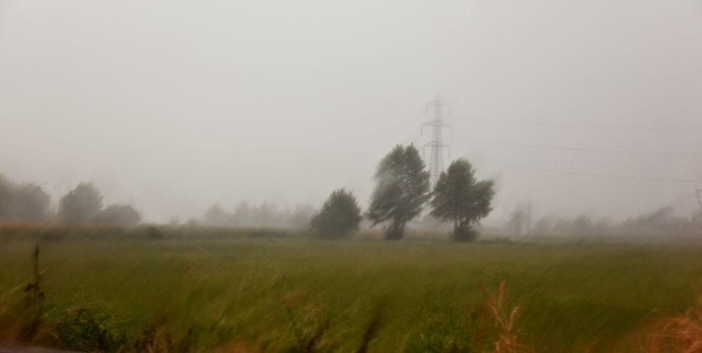 Погодные условия мешают уральским аграриям собрать урожай